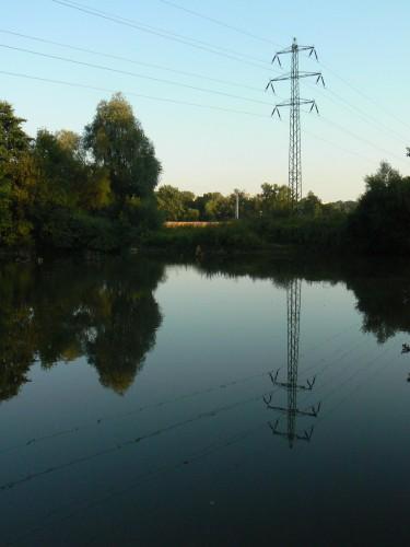 Wires-Foto_f