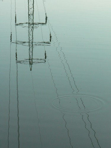 Wires-Foto_i